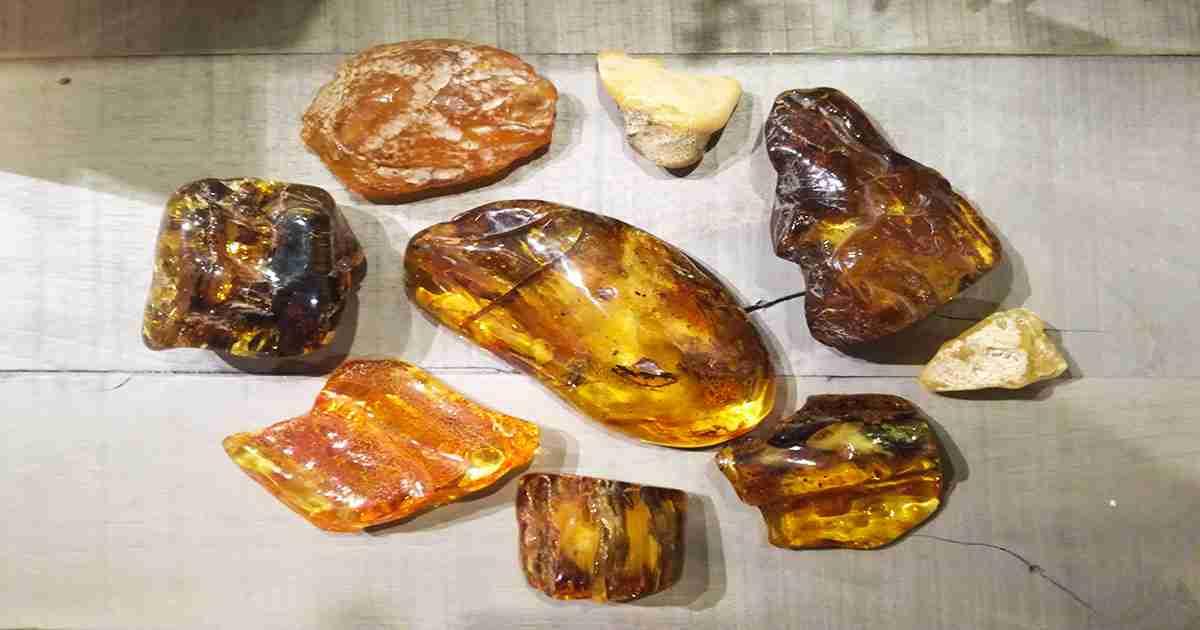 Andiamo a scoprire la varietà di colori dell'ambra baltica