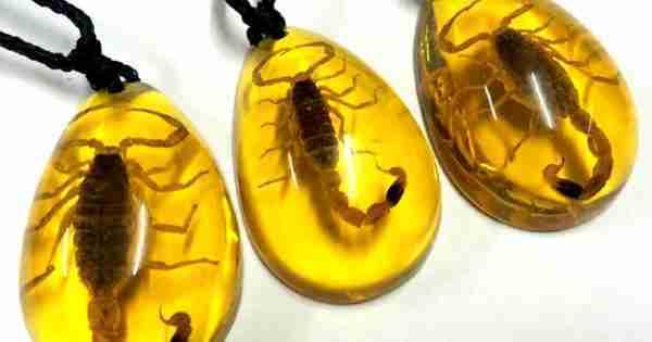 Imitazione di un'inclusione di scorpione nell'ambra